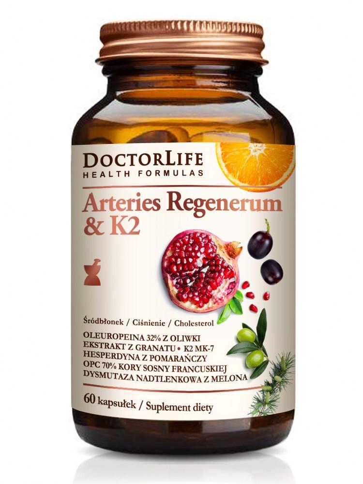 Arteries Regenerum z K2